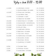 Rozpis služeb Vánoce 2020